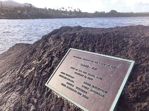 (Fonte: Maui News/Reprodução)