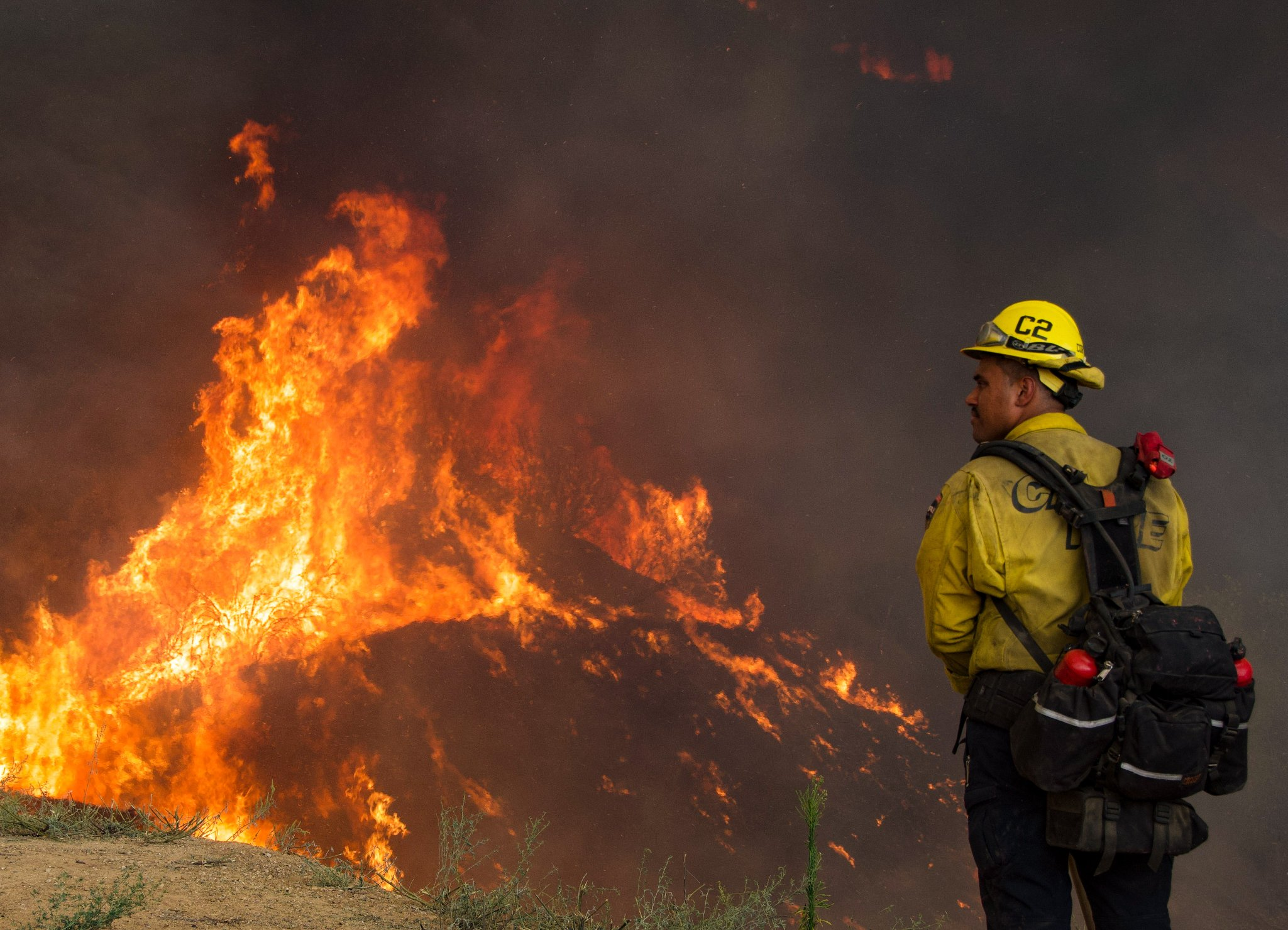 Bombeiros no combate ao incêndio de El Dorado Ranch Park. (Fonte: firevalleyphoto/Twitter/Reprodução)