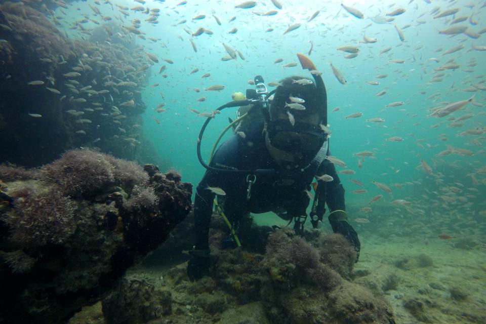 Navio naufragado foi encontrado a cerca de sete metros de profundidade.(Fonte: Instituto Nacional de Antropologia e História/Divulgação)