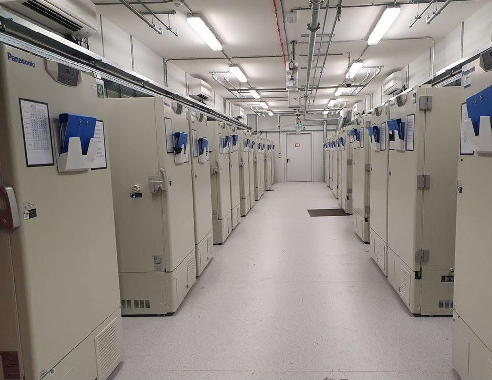 """Uma das """"fazendas"""" de freezers da UPS, com 600 unidades capazes de atingir - 80°C e com capacidade, cada uma, para 48 mil frascos de vacina."""
