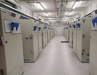 One of UPS 'freezer' farms', with 600 units capable of reaching - 80 ° C and with capacity, each, for 48 thousand vials of vaccine.
