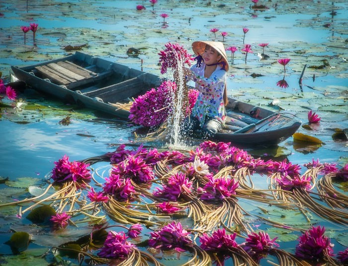 (Fonte: Trung Huy Pham/iPhotos)