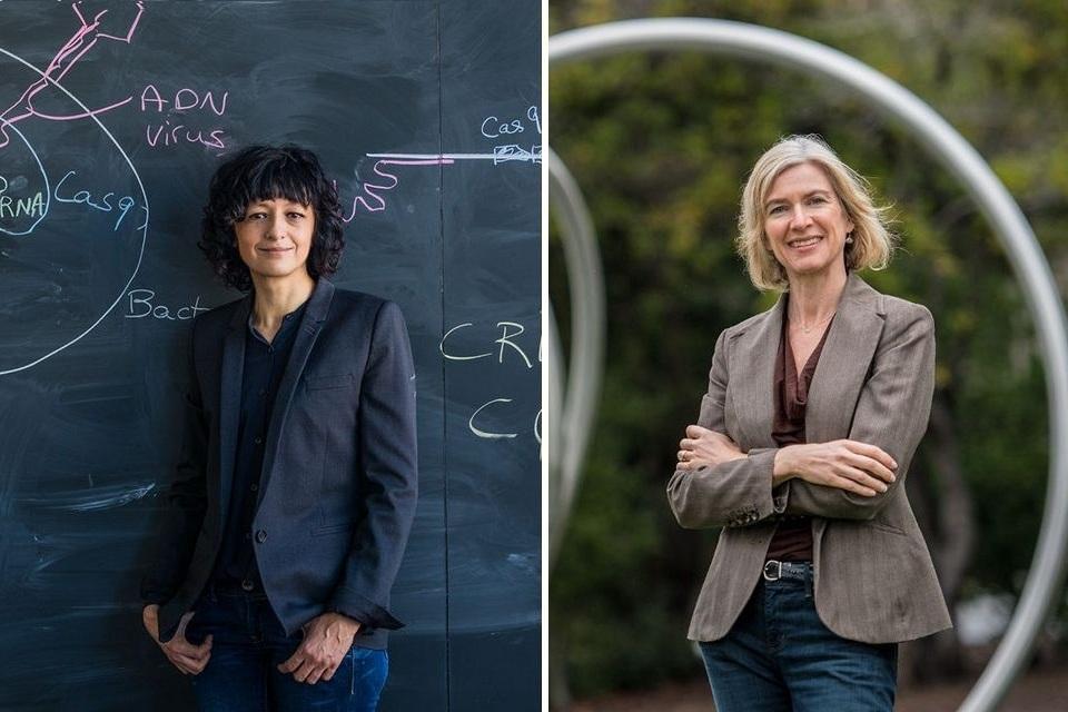 Nobel de Química: descobridoras da edição de genes CRISPR ganham prêmio