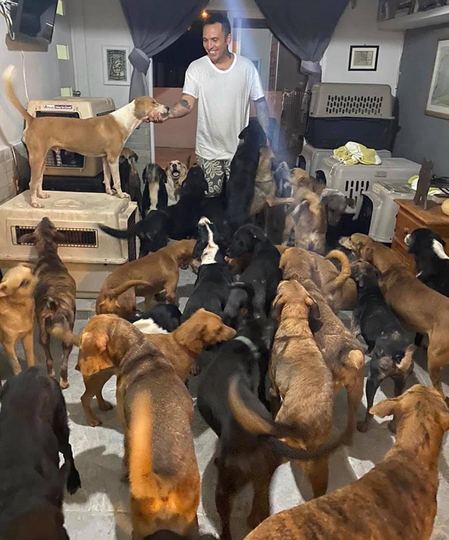 Pimentel registrou os momentos que passou com os animais em sua casa. (Fonte: Tierra de Animales/Reprodução)