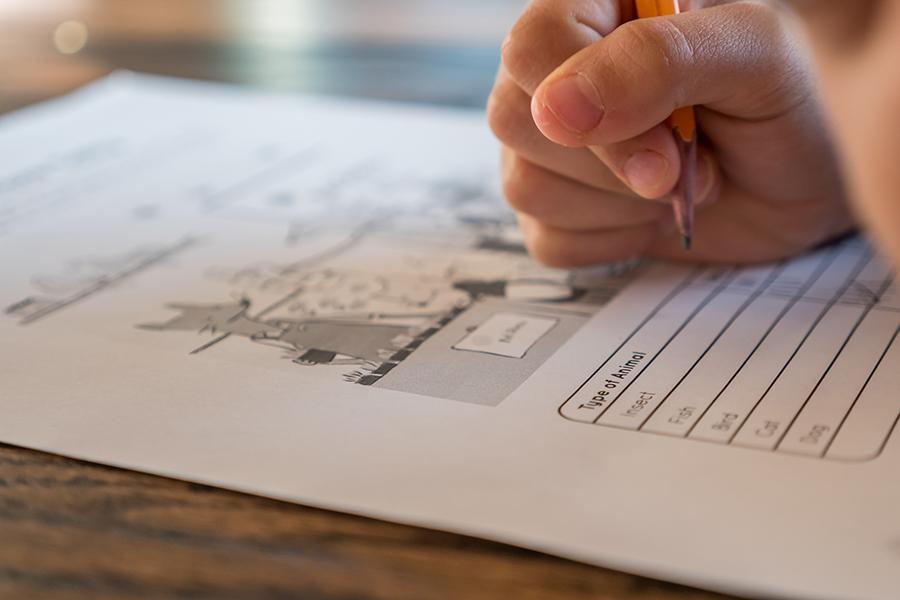 A atividade manual de escrever ativa a memória e o aprendizado. (Fonte: Pexels/Reprodução)