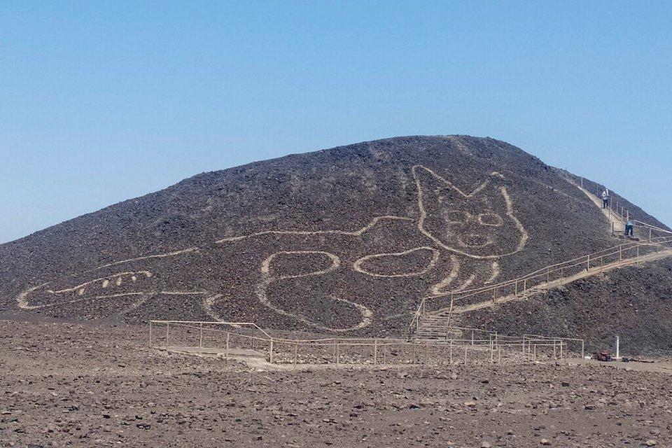 Figura de um gato é descoberta entre as Linhas de Nazca
