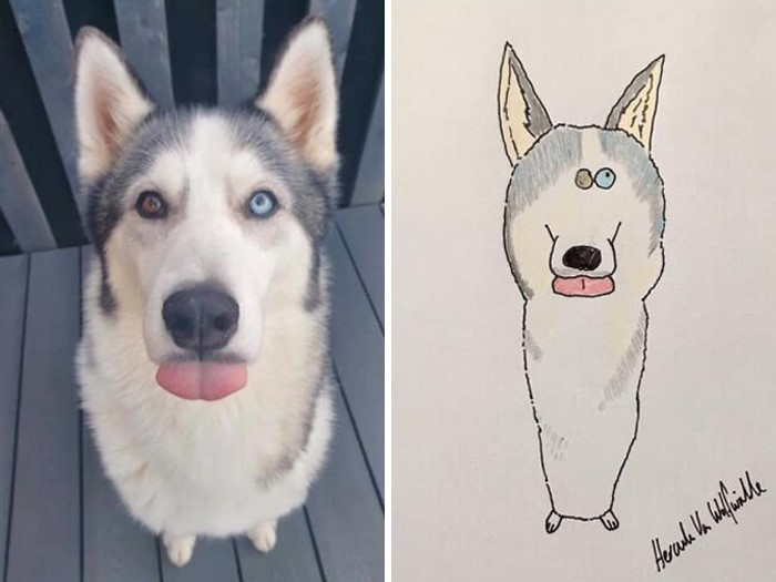 (Fonte: Pet Portraits By Hercules/Facebook)