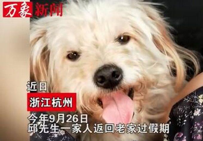 Fonte: Qianjiang Evening News/Reprodução