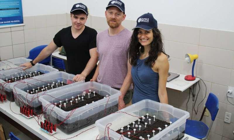 Os pesquisadores Jakub Dziegielowski, Jannis Wenk e Mirella Di Lorenzo com as células de combustível microbianas do solo (SMFC)