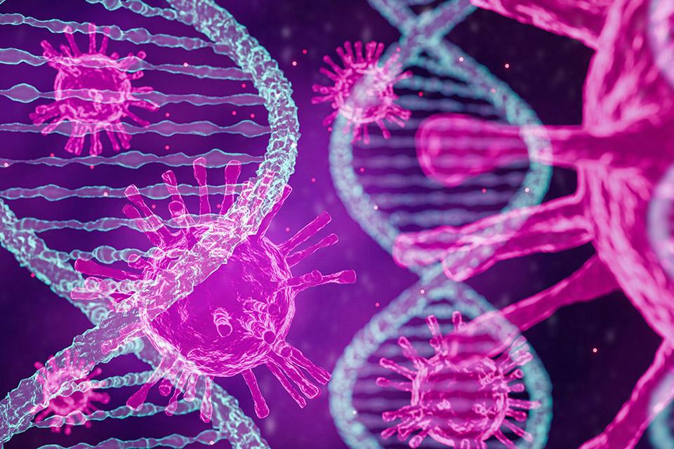 Covid-19: cientistas descobrem gene oculto dentro do gene do coronavírus