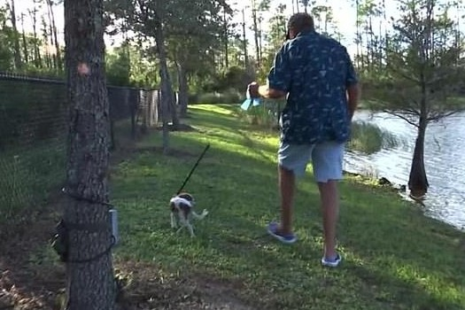 Wilbanks caminha com Gunner próximo ao lago do ataque.