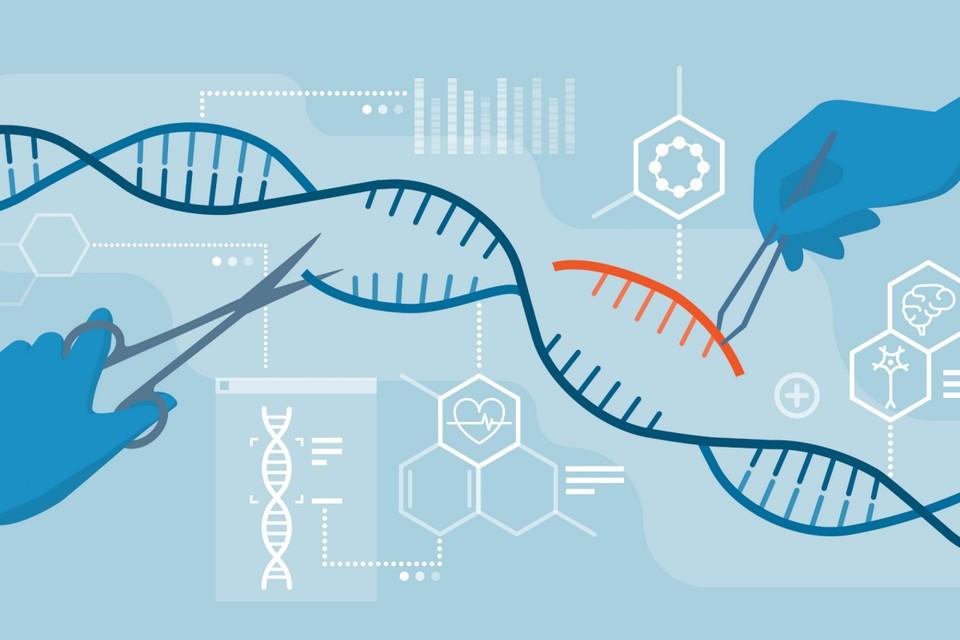 CRISPR: doentes com genes editados estão a um passo da cura