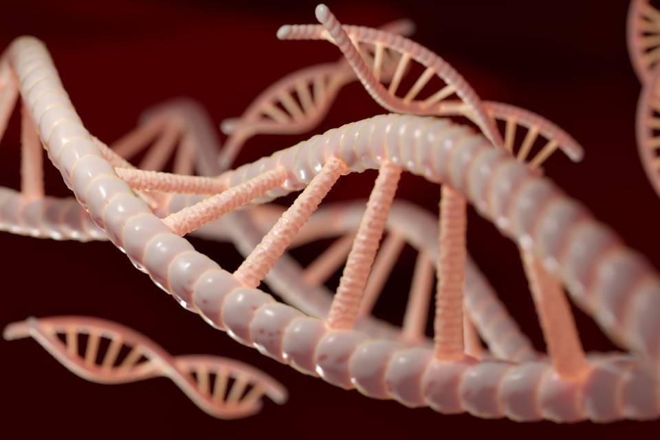 Clínica faz exame de DNA para tratamento de pele personalizado no RJ