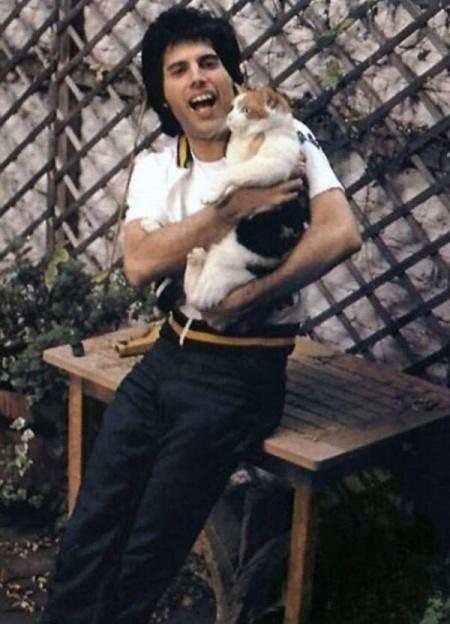 O cantor tinha um cuidado especial com os pets.