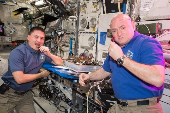 A rotina na ISS inclui até o cultivo de alface.