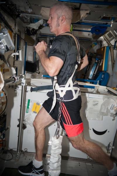 Os astronautas têm uma