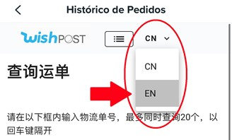 It is possible to change the language of the carrier's website to English