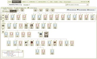 Ancestry service interface. (Source: Ancestry / Reproduction)