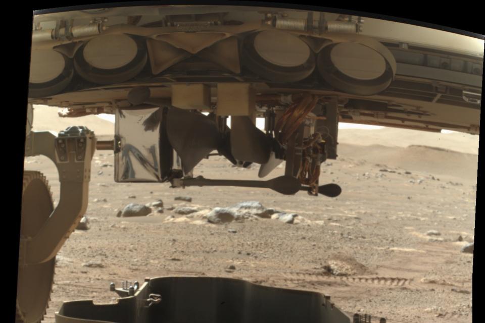 NASA divulga a 1ª imagem do drone Ingenuity em Marte
