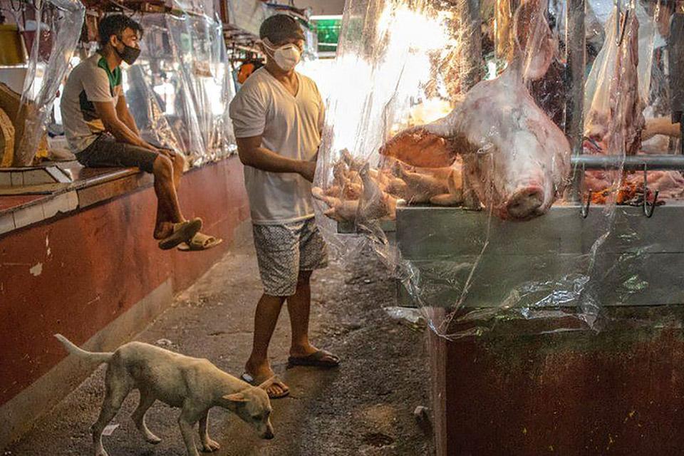 Estudo da OMS aponta mercado de animais como origem da pandemia