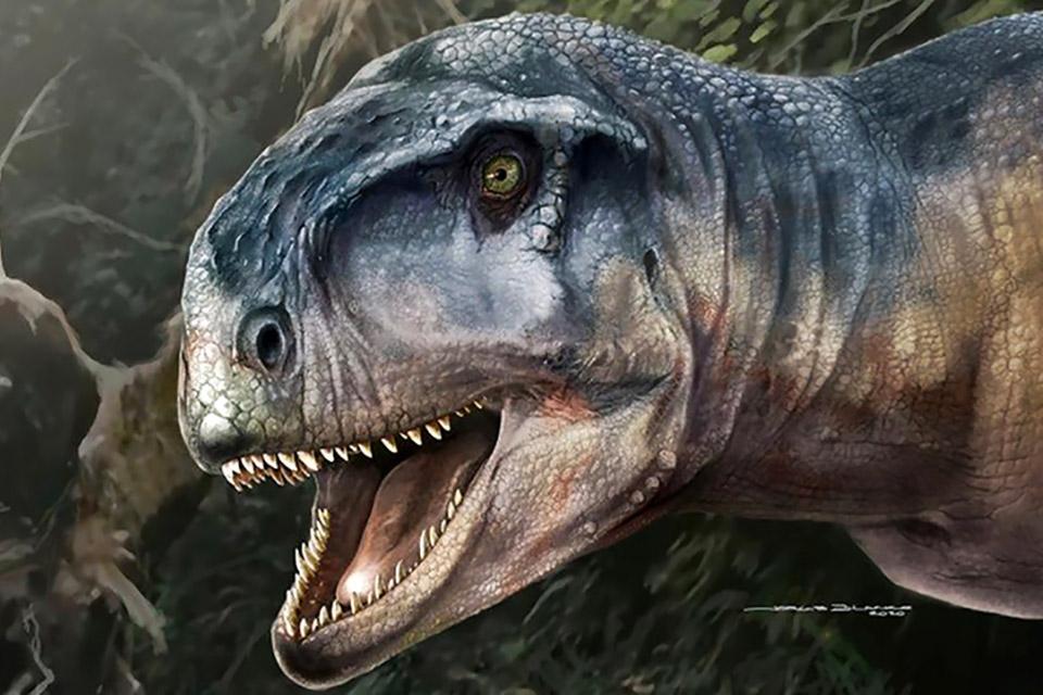 Dinossauro descoberto na Argentina foi o maior predador da época