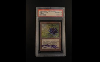 Rare Black Lotus card was sold for about R $ 3 million.