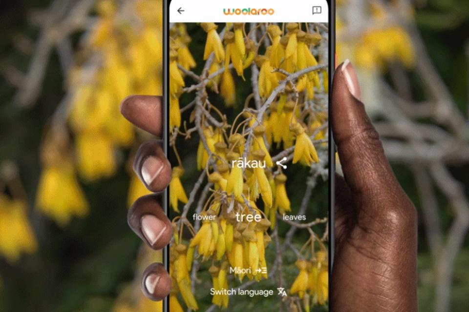 Google anuncia Woolaroo, app para preservar línguas indígenas