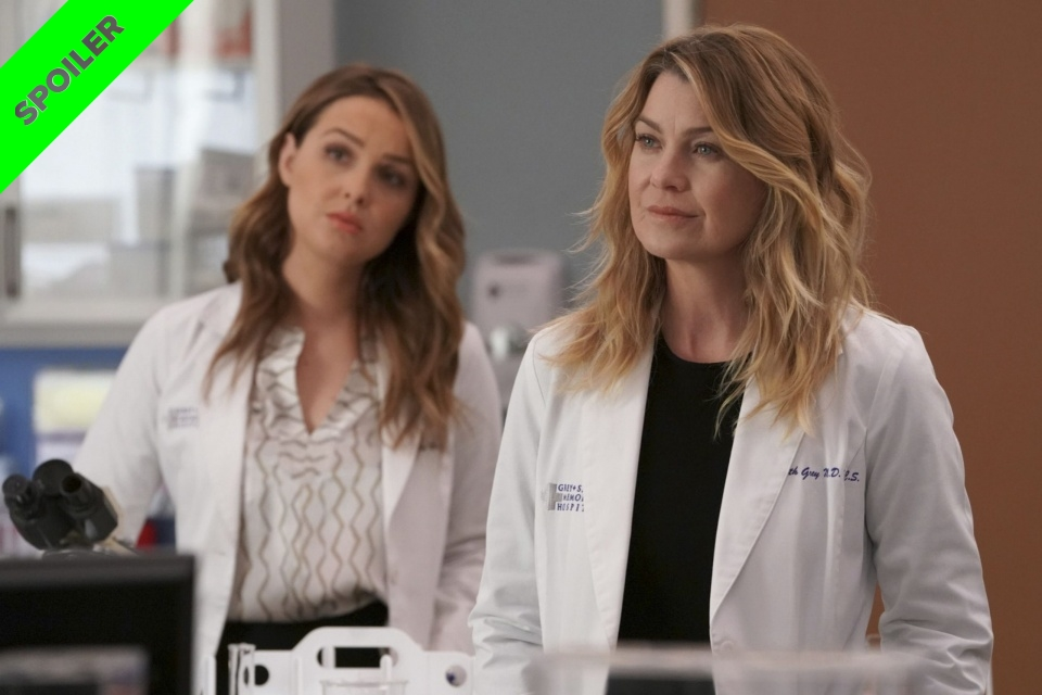 Grey's Anatomy 17x14: mais um personagem deixa a série