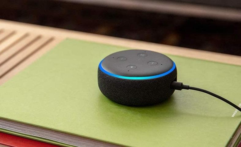 A 3rd Generation Echo Dot.
