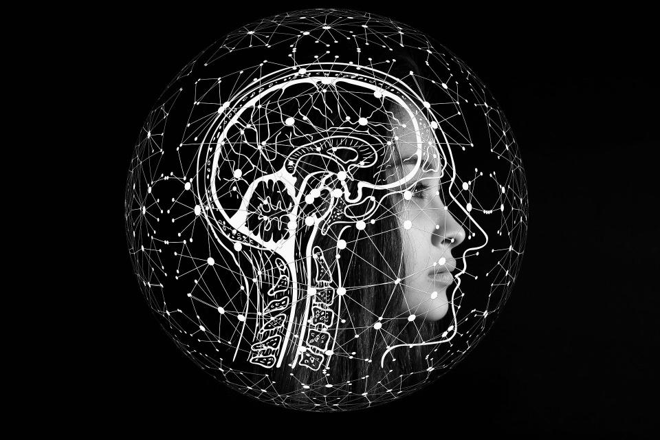 Veja como o cérebro oscila com cada batida do coração [vídeo]