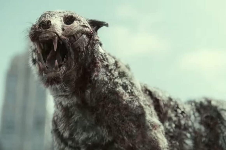 Army of the Dead: Netflix libera 15 minutos do filme; assista!