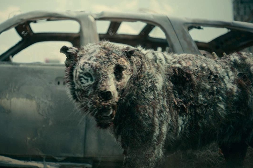 Army of the Dead: Netflix explica como o tigre zumbi foi feito