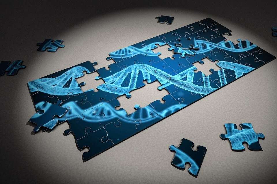 Cientistas alegam ter concluído o sequenciamento do genoma humano