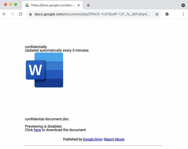 Exemplo de página falsa criada pelos cibercriminosos e enviada às vítimas, solicitando o download de arquivo.