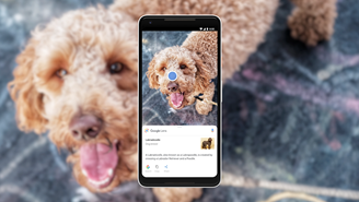 App can recognize differences between animals and plants.