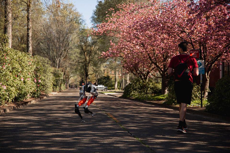 Robô bípede consegue percorrer 5 mil metros; veja o vídeo