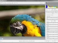 Imagem 1 do Adobe Camera Raw