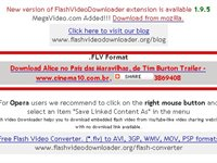 Imagem 2 do Flash Video Downloader