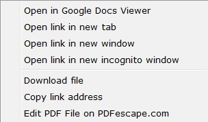 Pdf From Google Docs Viewer