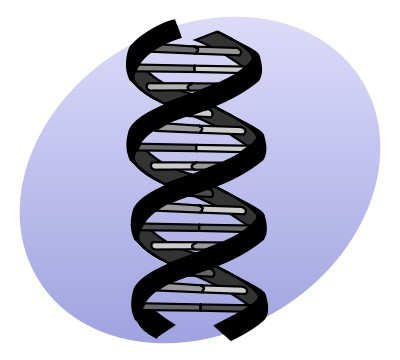 Código genético parecido