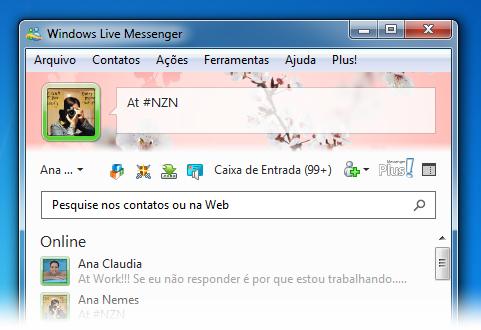 MSN 2011 com o tema alterado