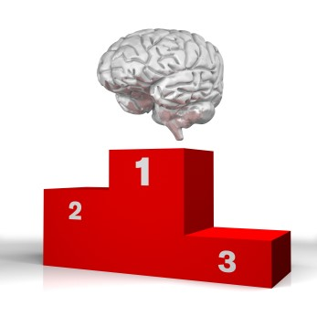 O Cérebro é o cara!