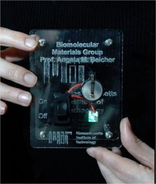 Protótipo da bateria de Vírus. Imagem de Donna Coveney para a MIT