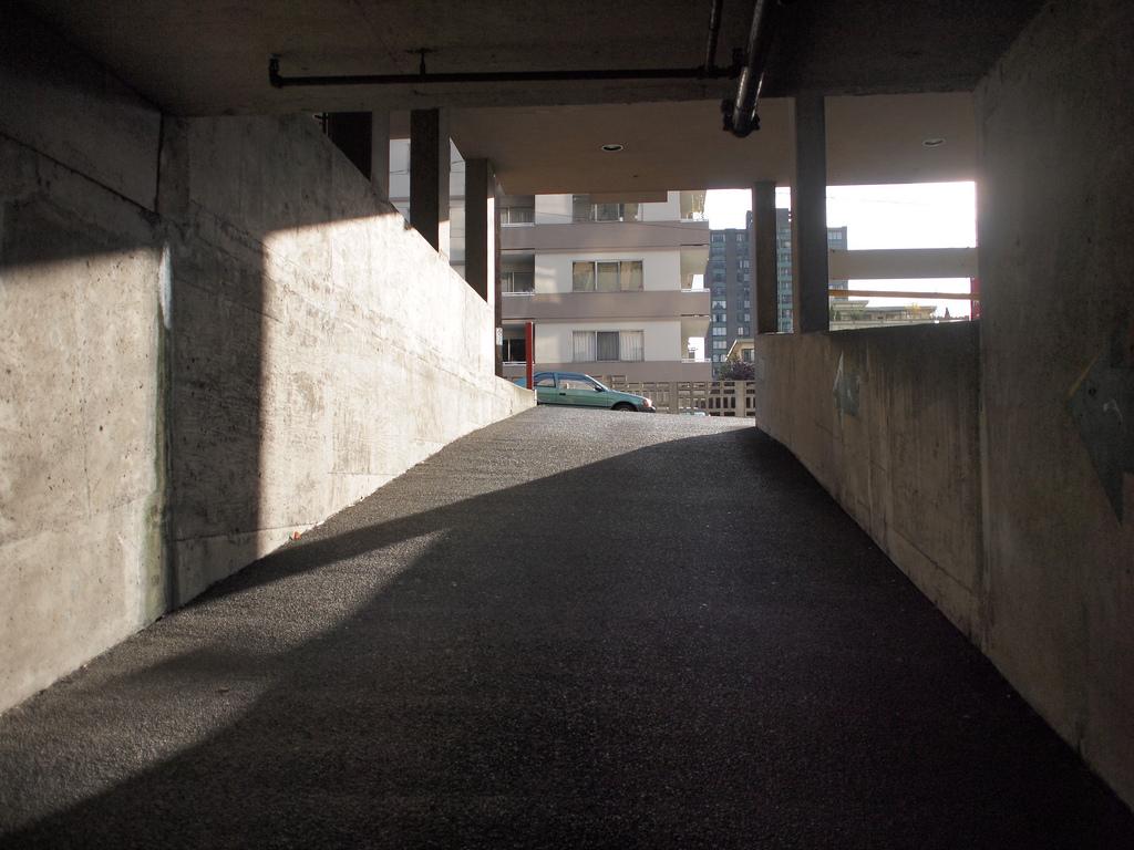 O LiveView ajuda a compor fotos em condições de iluminação não ideais. Foto: CanadaPenguin
