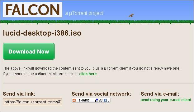 Compartilhamento de torrents via URL