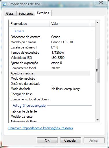 O Windows Explorer exibe dados EXIF na aba Detalhes da janela Propriedades de uma foto