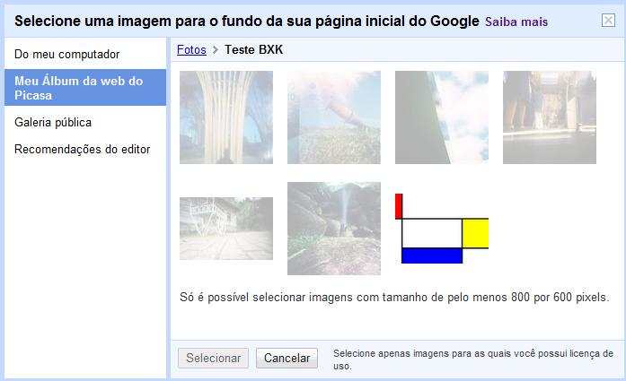 Na galeria do Picasa apenas as imagens compatíveis são selecionáveis