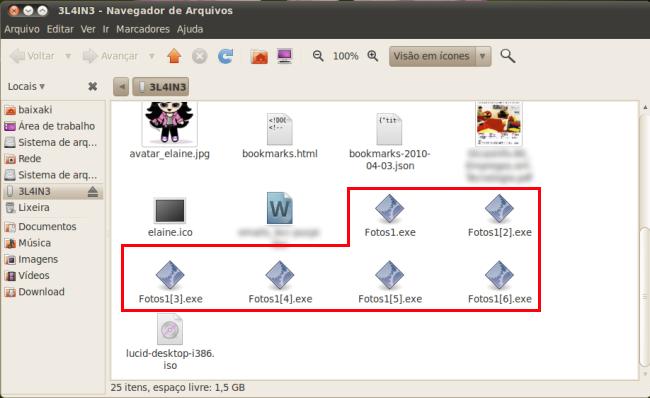 Arquivos EXE mostrados no Linux...