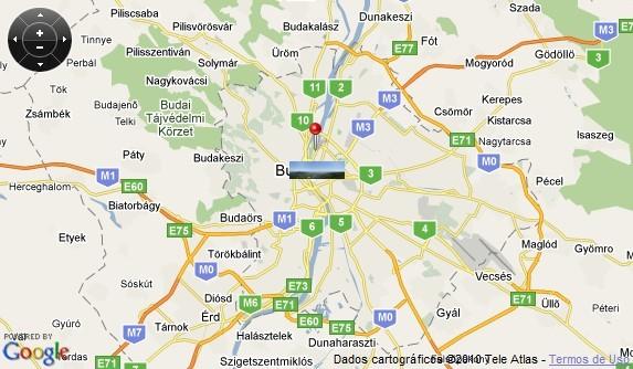 Agora uma miniatura da foto é fixada no mapa.