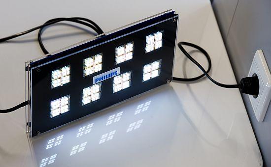Conjunto de luzes OLED